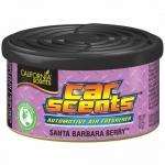 California Car Scents - Lesné ovocie